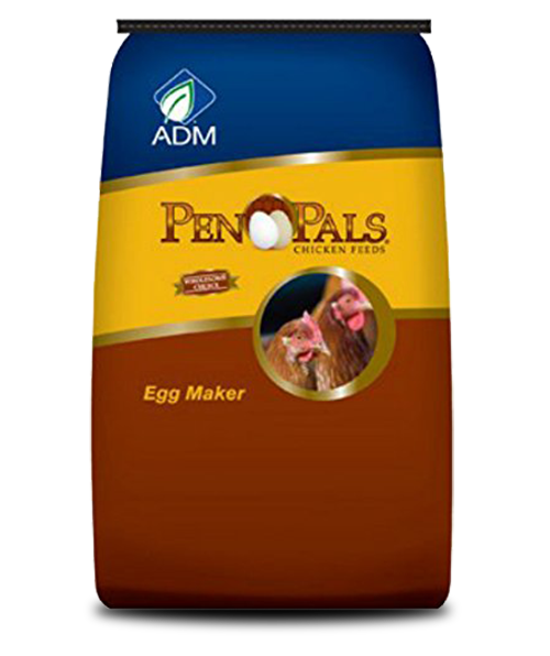 Pen Pals Egg Maker Complete