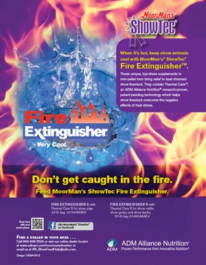 MoorMan's Showtec Fire Extinguisher R flyer