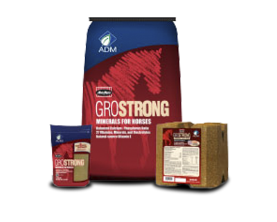 GroStrong